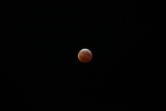 Lunar Eclipse, Jan 20 2019